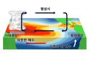 태평양의 수평, 수직 수온 분포
